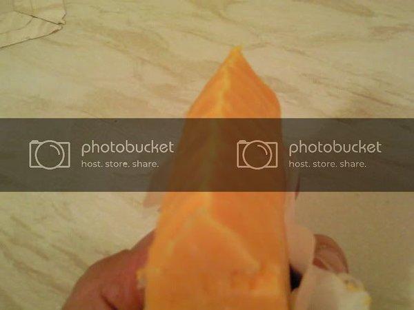 Photo0239.jpg