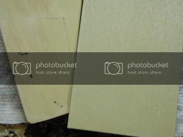 P1010043-1.jpg